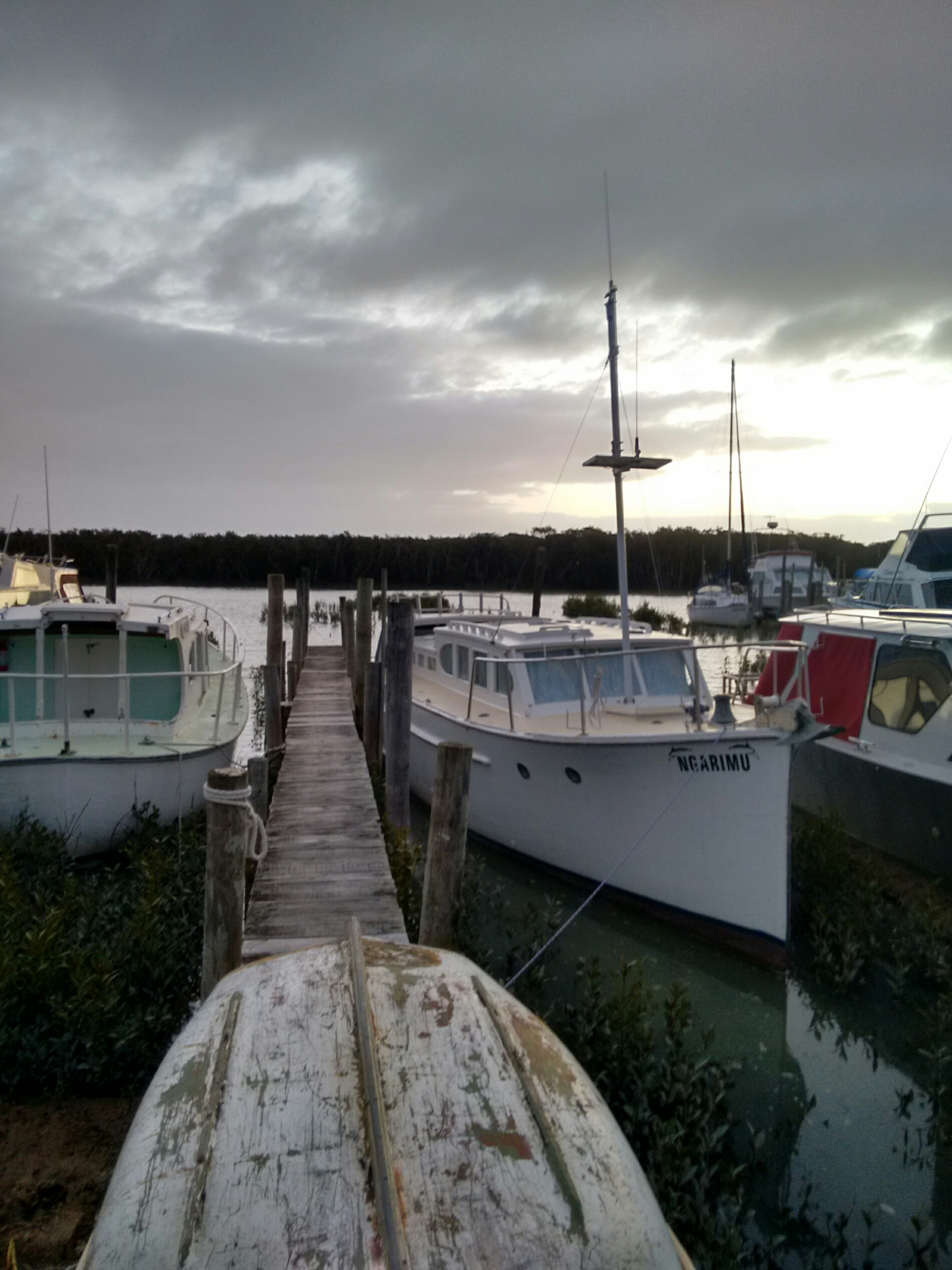 Thames marina at dusk in the southern coromandel