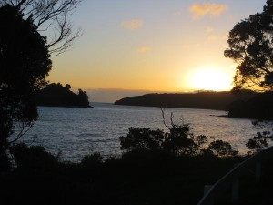 coromandel sunset