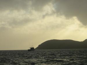 coromandel happy jack islands northern coromandel