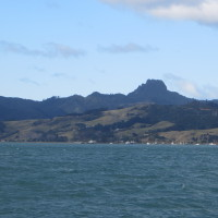 Mussel farms dot the Coromandel Harbour
