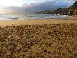waitete bay beach colville new zealand