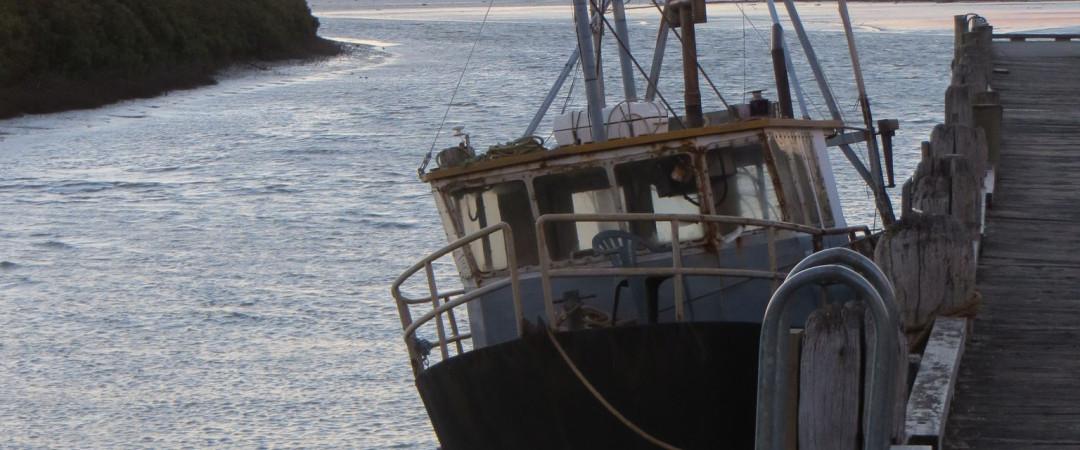 Fishing Boat Thames Fishmarket